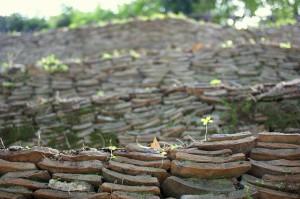 Monte dei cocci, Testaccio: i frammenti di anfore ordinatamente accatastati (CC) Flickr.com/Hans Dinkelberg
