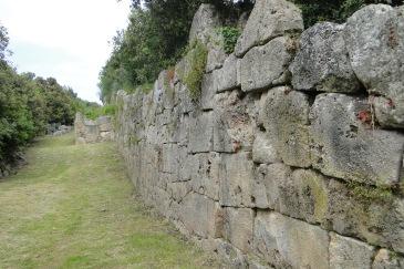 Le mura poligonali di Cosa